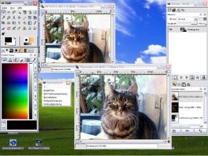 GIMP photo editor